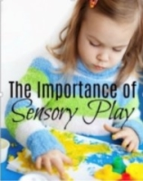 WEBINAR: INTEGRATING SENSORY PLAY INTO YOUR CLASSROOM - 2 weeks Course
